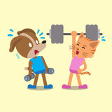 Cartoon cat and dog doing weight training Royalty Free Stock Image