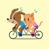 Cartoon a cat and a dog ride tandem bicycle Royalty Free Stock Images