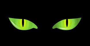 Cartoon cat eyes Stock Image