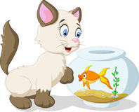 Cartoon cat and fish Stock Image