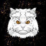 Cartoon cat head with golden eyes jn black background Royalty Free Stock Photo