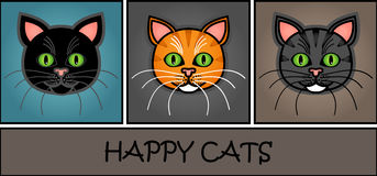 Cartoon cat header Royalty Free Stock Image