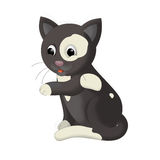 The cartoon - cat - illustration for the children Royalty Free Stock Image