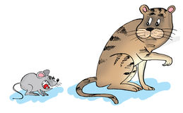 Cartoon of a cat and a mouse. Stock Photo