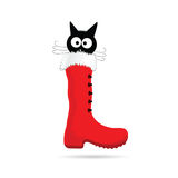 Cartoon cat and new year boot color vector. Illustartion Stock Photo