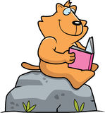 Cartoon Cat Reading. A cartoon cat reading a book on a rock Royalty Free Stock Image