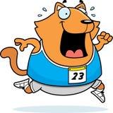 Cartoon Cat Running Race Royalty Free Stock Images