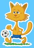 Cartoon Cat with Soccer Ball Royalty Free Stock Images