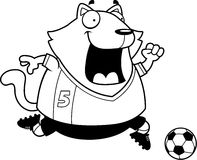 Cartoon Cat Soccer Royalty Free Stock Images