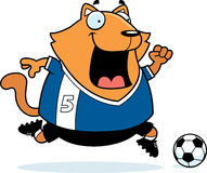 Cartoon Cat Soccer Royalty Free Stock Photo