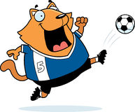 Cartoon Cat Soccer Kick Stock Photos