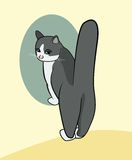 Cartoon of a cat standing on front feet with highly raised tail Stock Photos