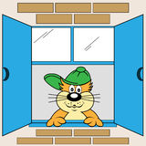 Cartoon Cat at Window. Cute cat cartoon character looking out the window wearing his green baseball cap stock illustration