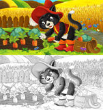 Cartoon cat working in the field - gathering carrots - with coloring page Royalty Free Stock Photography