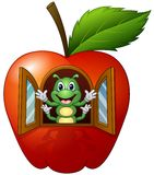 Cartoon caterpillar in the apple house Stock Photos