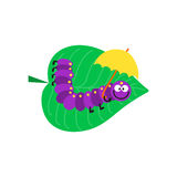 Cartoon caterpillar insect vector illustration. Element of fauna fun happy animal character graphic. Nature design colorful garden bug with many legs Stock Image