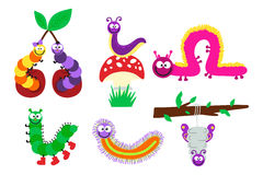 Cartoon caterpillar insect vector illustration. Element of fauna fun happy animal character graphic. Nature design colorful garden bug with many legs Royalty Free Stock Photos