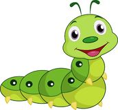 Cartoon Caterpillar isolated on white background stock illustration