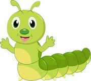 Cartoon Caterpillar isolated on white background stock photography