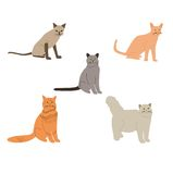 Cartoon cats  vector set. Stock Photos