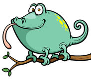 Cartoon Chameleon Stock Photo