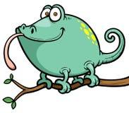 Cartoon Chameleon. Vector illustration of Cartoon Chameleon Stock Photo