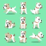 Cartoon character alabai dog poses set Royalty Free Stock Photos