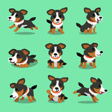 Cartoon character american shepherd dog poses Stock Images