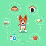 Cartoon character basenji dog and accessories set. For design Royalty Free Stock Photos