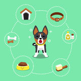 Cartoon character black basenji dog and accessories set. For design Stock Photography