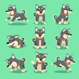 Cartoon character black shiba inu dog poses Royalty Free Stock Image