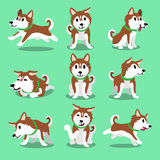 Cartoon character brown siberian husky dog poses Royalty Free Stock Photos
