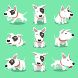 Cartoon character bull terrier dog poses Stock Photo