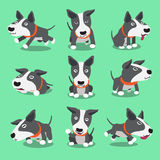 Cartoon character bull terrier dog poses Royalty Free Stock Photo