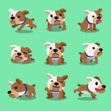 Cartoon character bulldog poses Royalty Free Stock Images