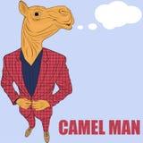 Cartoon character camel Stock Photography