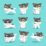 Cartoon character cat pose. For design Royalty Free Stock Photo