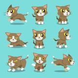 Cartoon character cat poses Royalty Free Stock Photo
