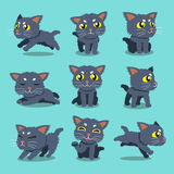 Cartoon character cat poses set. For design Stock Images