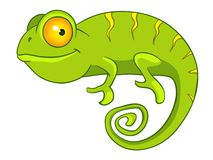 Cartoon Character Chameleon Royalty Free Stock Image