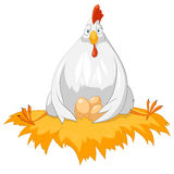 Cartoon Character Chicken. Isolated on White Background. Vector Royalty Free Stock Photos