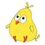 Cartoon character chicken. Cute little chicken Stock Images