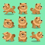 Cartoon character chow chow dog poses Royalty Free Stock Photos