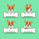 Cartoon character corgi dog with big bones Stock Images