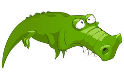Cartoon Character Crocodile. Isolated on White Background. Vector vector illustration