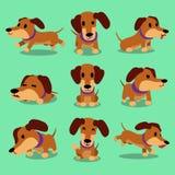 Cartoon character dachshund dog poses Stock Photo