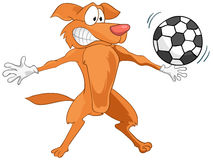Cartoon Character Dog Royalty Free Stock Images