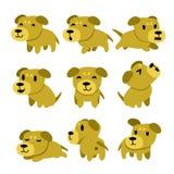 Cartoon character dog poses set Royalty Free Stock Photography