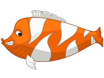 Cartoon Character Fish Royalty Free Stock Images