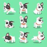 Cartoon character french bulldog poses Royalty Free Stock Images